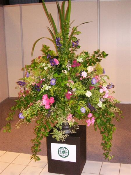 20120707 Bloom 3