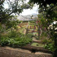 11/05/2009: Reis naar Madeira