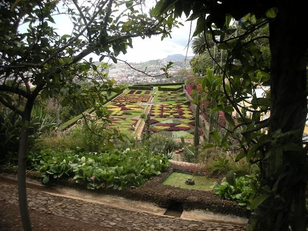 20090511 Reis naar Madeira 01