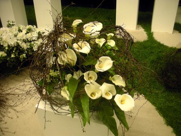 20100417 Gentse Floraliën 8