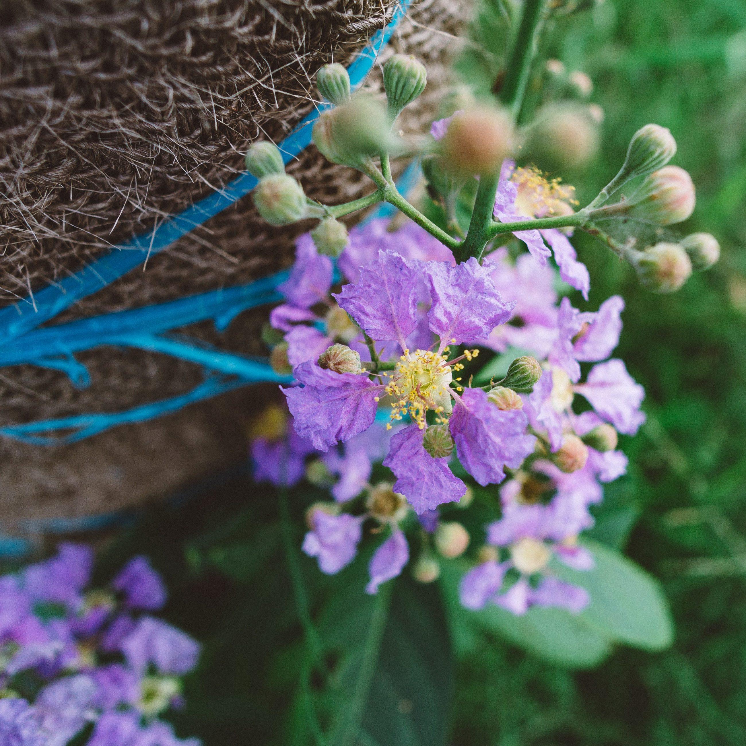 RBFAS voor ledenen niet leden bloemschikken 04