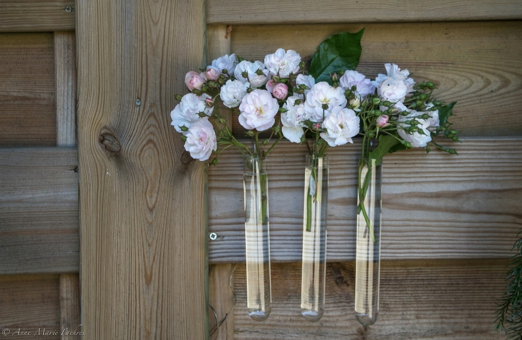 Agenda in het Buitenland RBAFS Royal Belgian Flower Arrangement Society