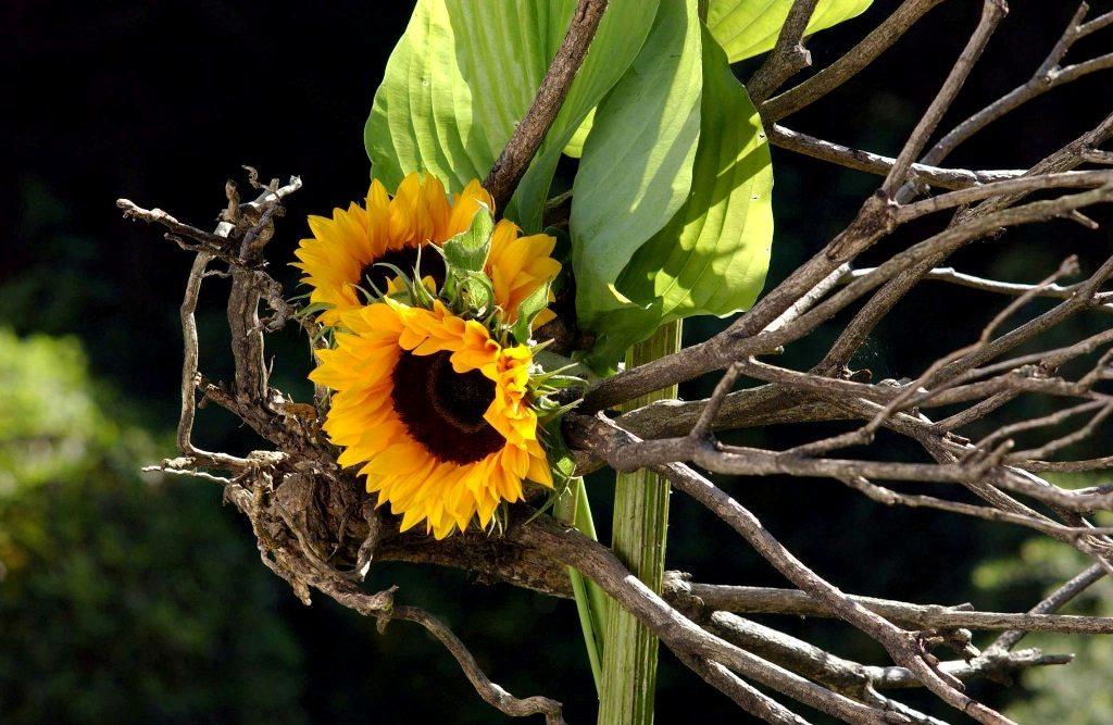 infoblad-voor-de-leden RBAFS Royal Belgian Flower Arrangement Society