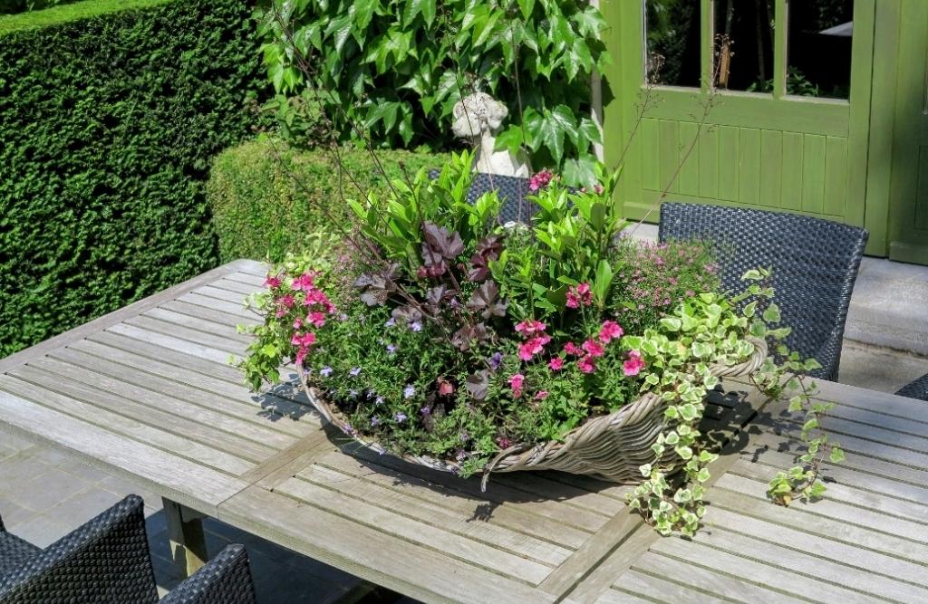 Actualité RBAFS Royal Belgian Flower Arrangement Society