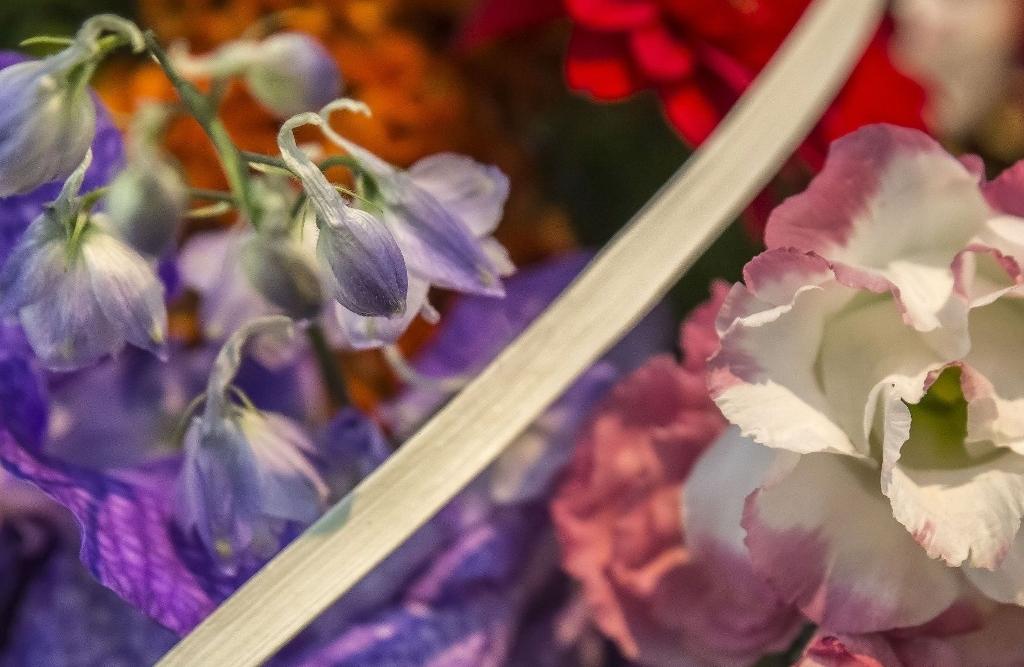 Cours de base d'art floral RBAFS Royal Belgian Flower Arrangement Society